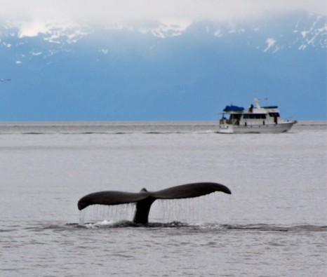 DV is SE Alaska